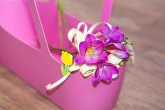 在桃红色袋子的美丽的小苍兰花 免版税库存图片