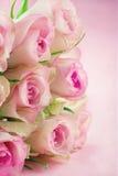 在桃红色织地不很细背景的玫瑰 库存照片