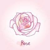 在桃红色织地不很细背景的被加点的玫瑰色花与在淡色的污点 在dotwork样式的花卉元素 皇族释放例证