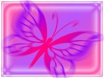 在桃红色紫罗兰色的蝴蝶 免版税库存图片