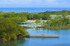 在桃花心木海湾的缆车在Roatan,洪都拉斯 库存照片
