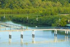 在桃花心木海湾的缆车在Roatan,洪都拉斯 免版税库存图片