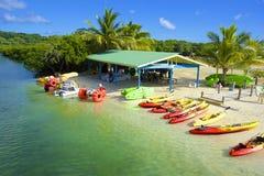 在桃花心木海湾的Watersports在Roatan,洪都拉斯 库存照片