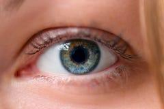 在框架的一只眼睛 图库摄影