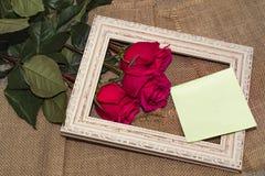 在框架的三朵玫瑰 免版税库存照片