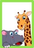 在框架的愉快的动物 库存图片