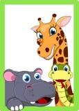 在框架的愉快的动物 免版税库存照片