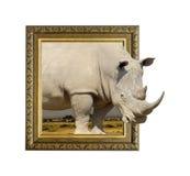 在框架的犀牛与3d作用 库存照片