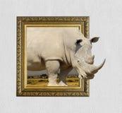 在框架的犀牛与3d作用 免版税库存图片