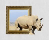 在框架的犀牛与3d作用 免版税图库摄影