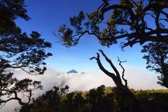 在框架的登上塞梅鲁火山 免版税库存照片