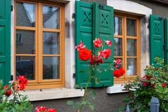 在框架门面的英国兰开斯特家族族徽与木头绿色窗口快门  免版税库存照片