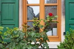 在框架门面的英国兰开斯特家族族徽与木头绿色窗口快门  免版税库存图片