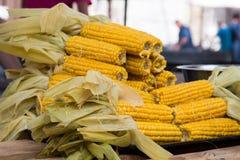 在桌上堆积的煮熟的玉米棒子 库存照片