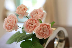在桌上显示的桃红色玫瑰 免版税库存图片