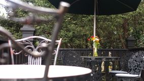 在桌上的五颜六色的红色橙黄雏菊 免版税库存图片