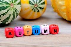在桌上的五颜六色的词秋天 免版税库存图片