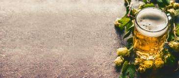 在桌上的啤酒杯用在黑暗的土气背景的新鲜的蛇麻草 库存图片