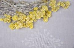 在桌上的小黄色花 免版税库存照片