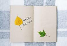在桌上的开放笔记本、桦树和槭树叶子 喂秋天 免版税图库摄影