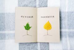 在桌上的开放笔记本、桦树和槭树叶子 10月 11月 库存图片