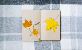 在桌上的开放笔记本和槭树叶子 免版税库存图片