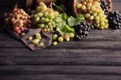 在桌上的新鲜的成熟葡萄 库存照片