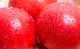 在桌上的新鲜的蕃茄 库存图片