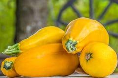 在桌上的有机新鲜的橙色夏南瓜 库存照片