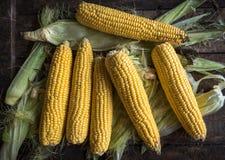 在桌上的未加工的玉米 免版税图库摄影