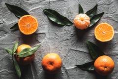 在桌上的柑橘:普通话,与刀子的蜜桔 新鲜的有机水多的果子 库存图片