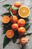 在桌上的柑橘:普通话,与刀子的蜜桔 新鲜的有机水多的果子 免版税库存照片
