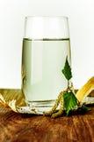 在桌上的桦树树汁 库存照片