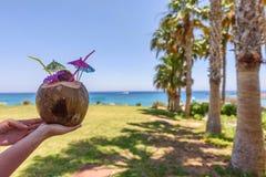 在桌上的椰子果子 免版税库存照片