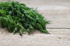 在桌上的湿绿色莳萝 免版税库存照片