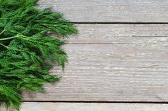 在桌上的湿绿色莳萝 免版税库存图片