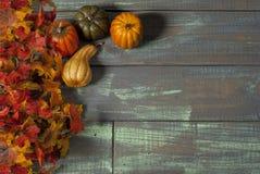 在桌上的秋天叶子 库存图片