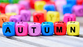在桌上的秋天词 图库摄影