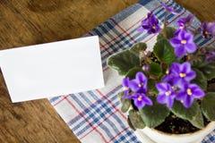 在桌上的精美紫色紫罗兰 库存照片