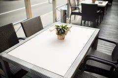 在桌上的美丽的花在咖啡馆 图库摄影
