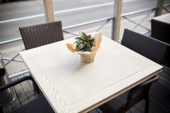 在桌上的美丽的花在咖啡馆 免版税库存图片