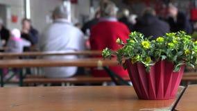 在桌上的花假日 股票录像