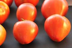 在桌上的蕃茄 免版税库存照片