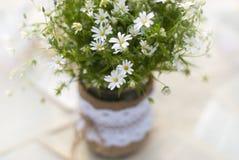 在桌上的野花 图库摄影