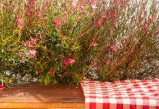 在桌上的野餐布料与红色花 免版税库存图片