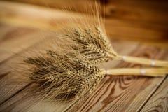 在桌上的麦子 免版税库存图片