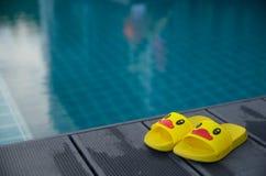 在桌上的黄色凉鞋鸭子在游泳池旁边 库存图片