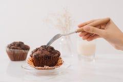 在桌上的Dellicious自创巧克力松饼 立即可食 免版税库存图片