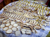 在桌上计划的切的便士小圆面包 免版税库存图片