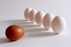 在桌上说谎的鸡蛋 免版税库存图片